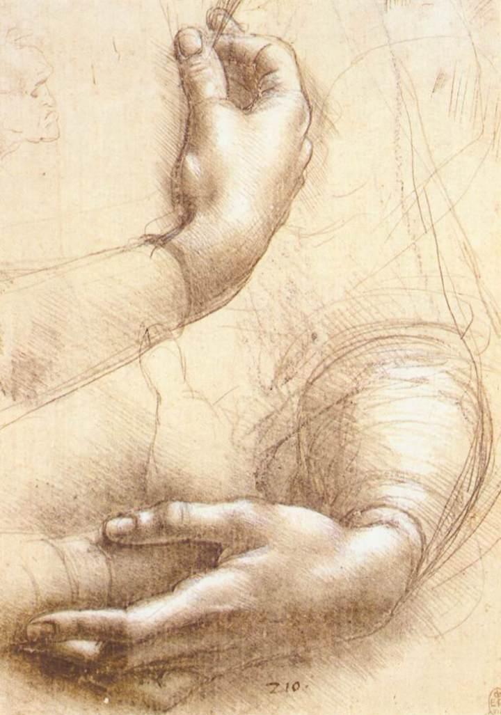 leonardo_da_vinci_-_study_of_hands_-_wga12812